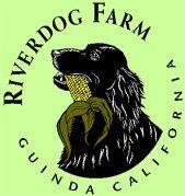 Riverdog Farm Guinda