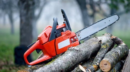 A red electric saw on top of a pile of tree branches