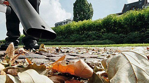 A leaf blower being used on a lawn strewn with Autumn leaves