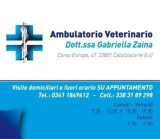 ospedale veterinario, riproduzione veterinaria, veterinari per animali da compagnia