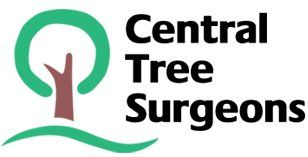 Central tree surgeons company logo