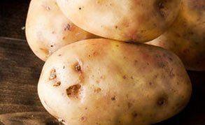 fantastic range of potatoes