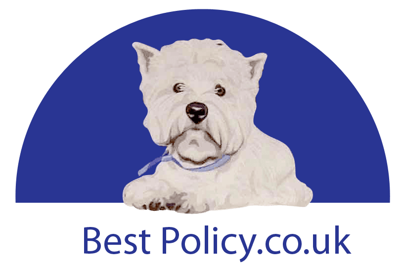 Best Policy logo