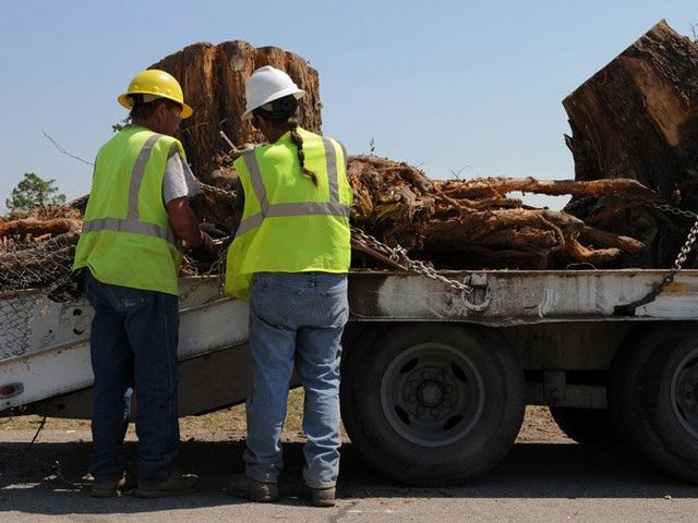 workers placing removed trunk on truck
