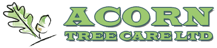Acorn Tree Care logo