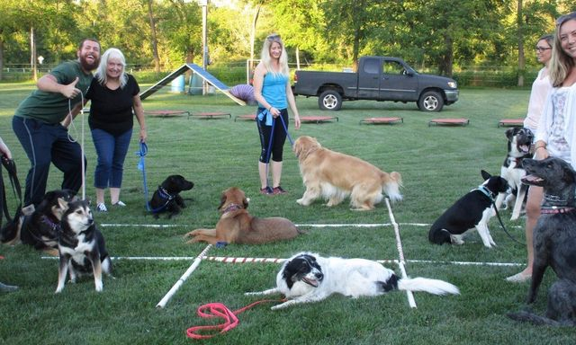 Daycare and Kennel Tours at Mill Pond Vet Clinic