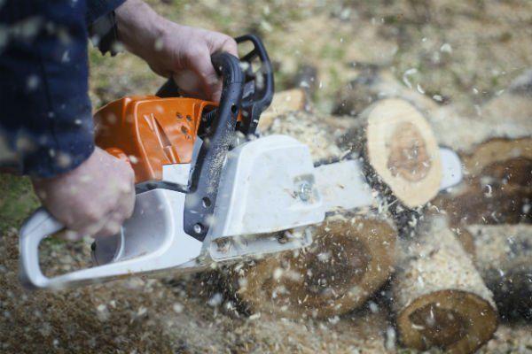due mani con una motosega che tagliano della legna