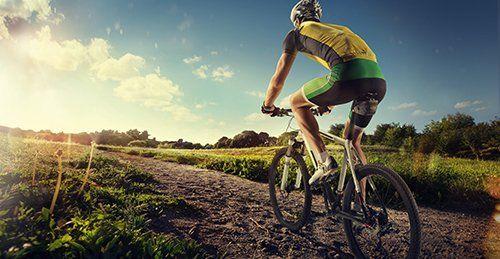 bici nuove e usate nella natura a Altavilla Vicentina
