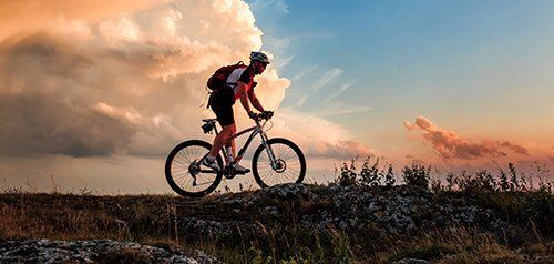 Vendita biciclette in provincia di Vicenza