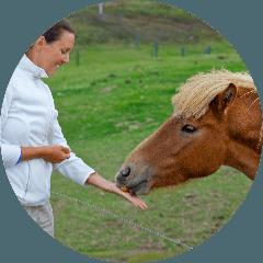 Pony feeding