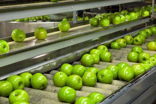 rulli con mele verdi di una macchina industriale