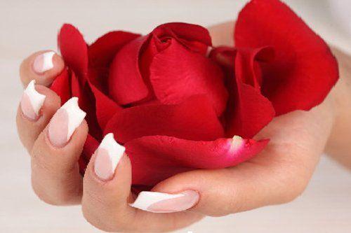 Rosa rossa in una mano con ricostruzione unghie