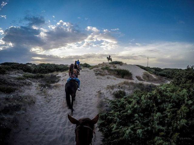 persone che fanno passeggiate a cavallo