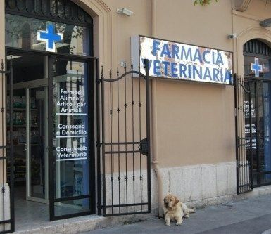 FARMACIA VETERINARIA
