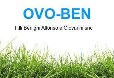 OVO-BEN F.lli Benighi Alfonso e Giovanni snc