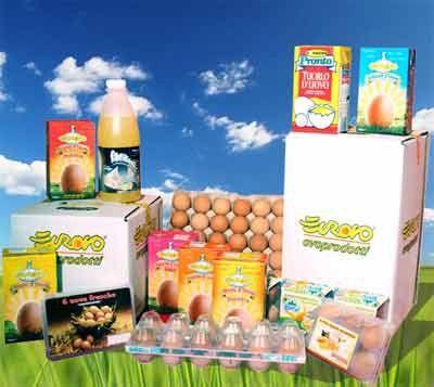 assortimento uova e prodotti derivati