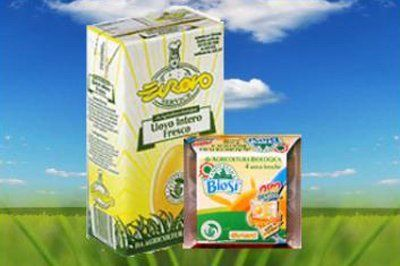 uovo intero fresco a marchio EUROVO e confezione di 4 uova da agricoltura biologica