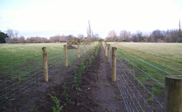 Fencing done by an earthmoving contractor in the Waimakariri district