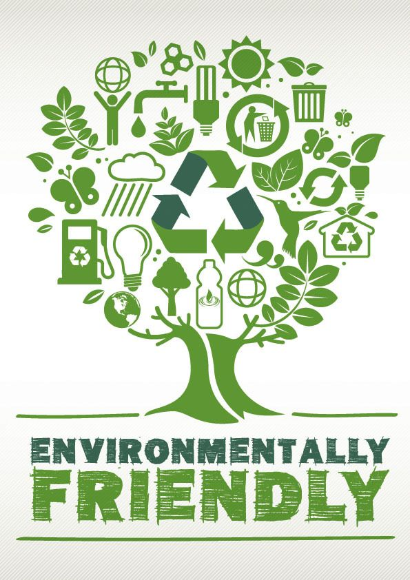 environmental friendly schools