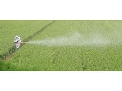 trattamenti fitosanitari D&D