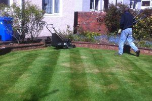 A man walking towards a mower on a striped lawn