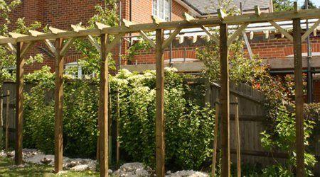 Pergola in front of a privet hedge