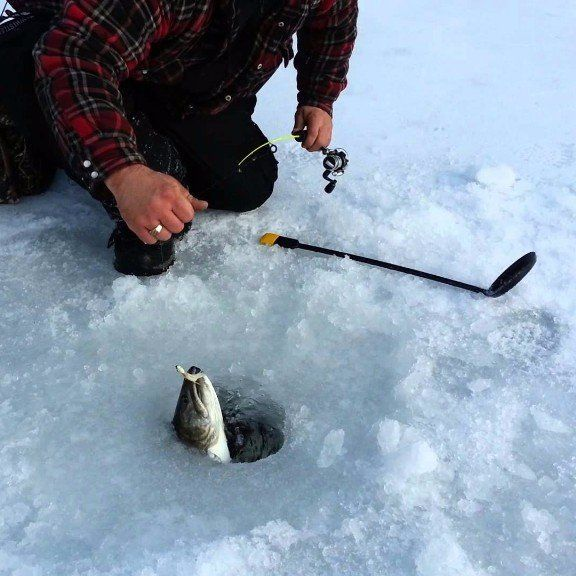 Photo of a man pulling a fish out of an ice fishing hole