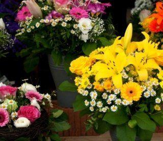 composizione fiori, fiori recisi, fiori secchi