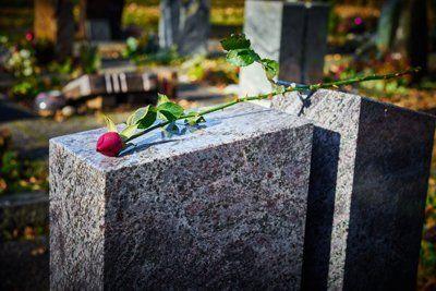 rosa su una tomba del cimitero