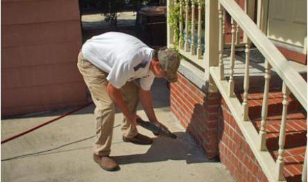 termite control in Enterprise, AL