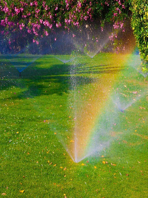Sprinkler outisde of commercial building in Waterford