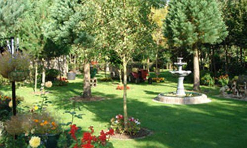 An ornate garden with fountain and lollipop shaped trees