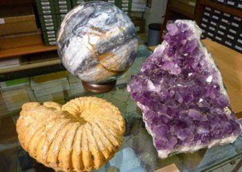ammonite con ametista appoggiate su un tavolo