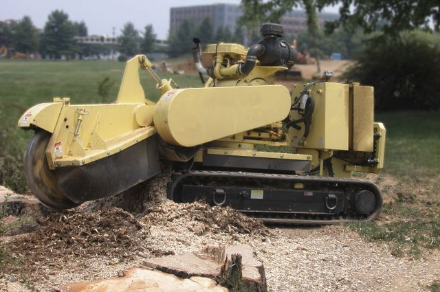 tree removal service plow in Cincinnati, OH