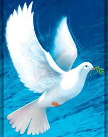 A white dove painting