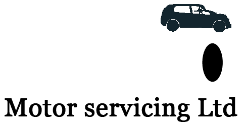 Euro motor servicing Ltd logo