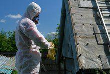 asbestos removal contractors
