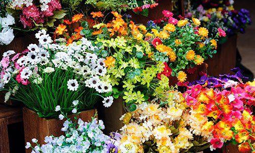 Molteplici varietà di fiori