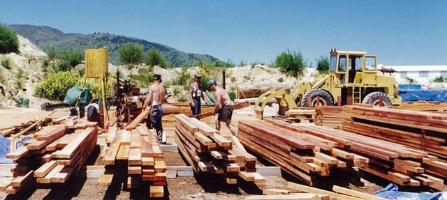 Wood used for timber flooring in Auckland