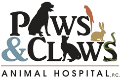 Paws & Claws Animal Hospital | Veterinary Clinic Wilmington