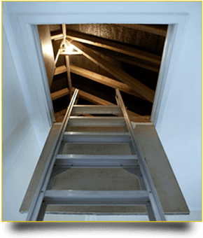 Loft Ladder into loft