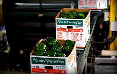Celebrated growers buy Florida Specialties, LLC