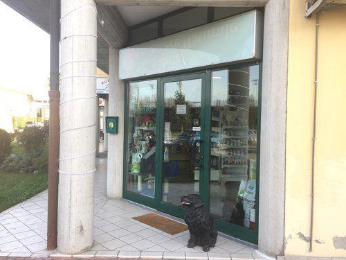 entrata del negozio con cane nero che aspetta fuori