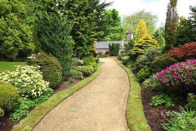 Giardini progettato a Pontino