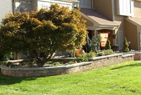 Home lawn and landscaping
