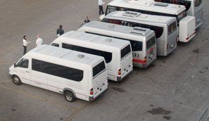 several minibuses
