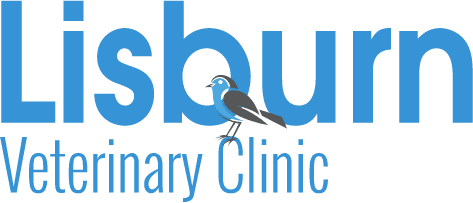Lisburn Veterinary Clinic logo