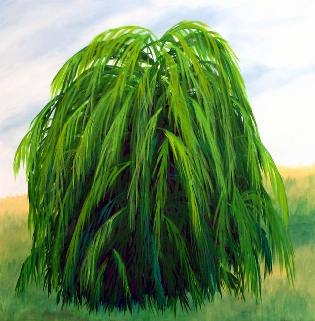 Willow Tree Painting