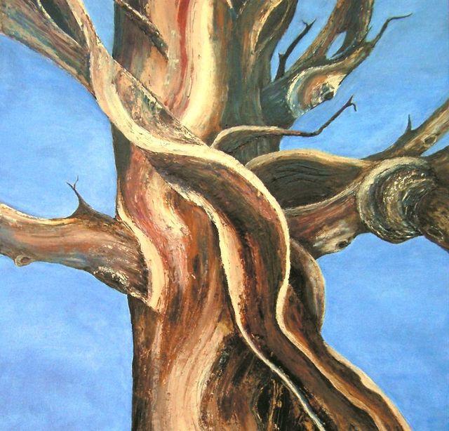 Bristlecone Painting 4