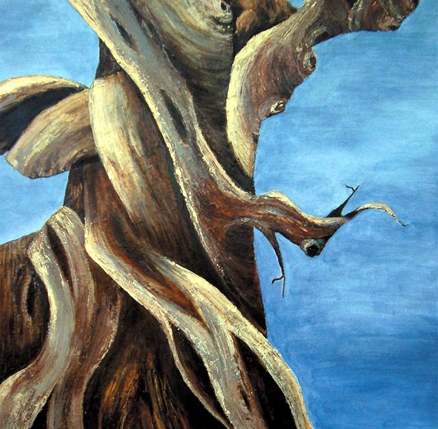 Bristlecone Painting 3 - SOLD